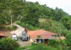 DinoEvo in Nicaragua