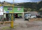 DinoEvo in Colombia