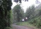 DinoEvo in Costa Rica